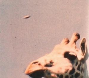 UFO-1972-Devon-England