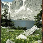 Medicine_Bow_National_Forest