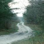Eau_Claire_County_Wisconsin_D