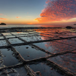 Tessellated_Pavement_Sunrise_Landscape